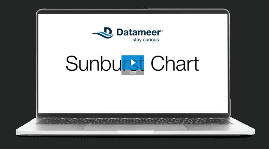 Sunburst Chart