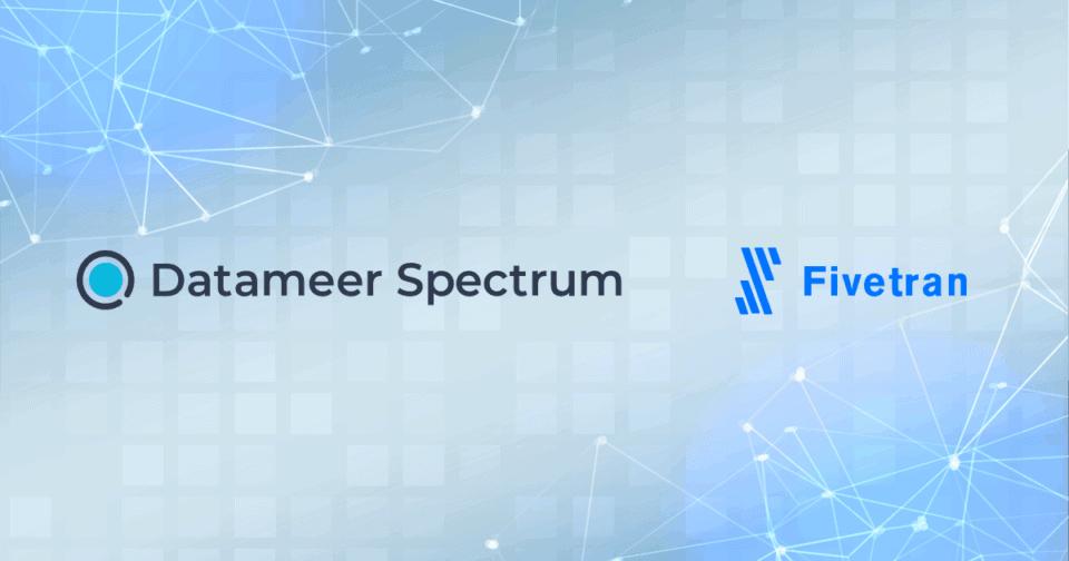 Comparing Fivetran and Datameer Spectrum