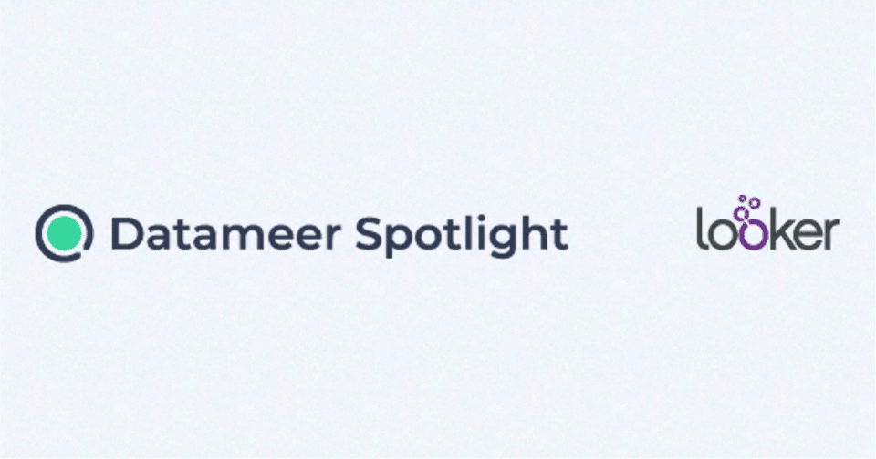 Spotlight for Looker Data Management