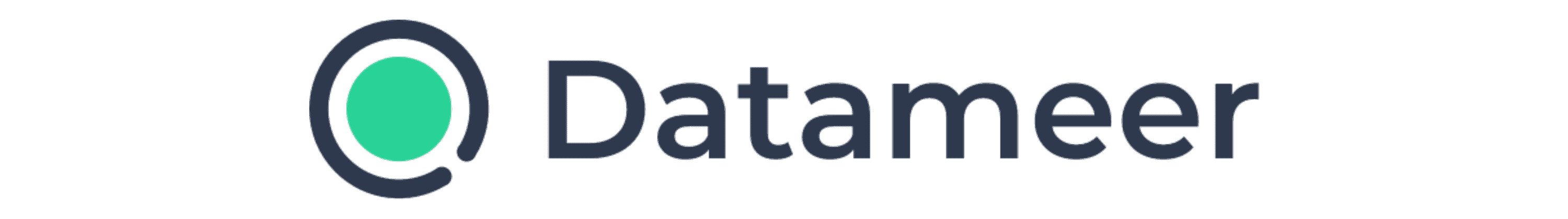 Datameer logo for banners