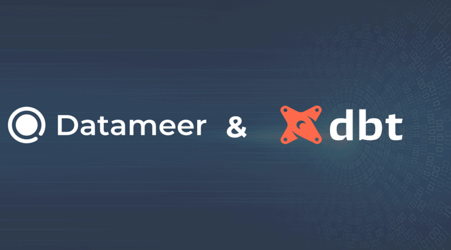 Datameer and dbt